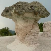 Каменни гъби (Бели пласт)